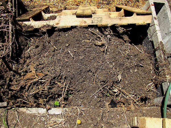 picture of a compost pile