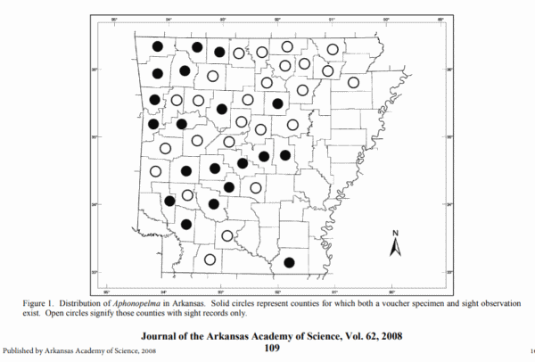 picture of the county wide distribution of tarantulas in Arkansas, part of the Arkansas spiders series