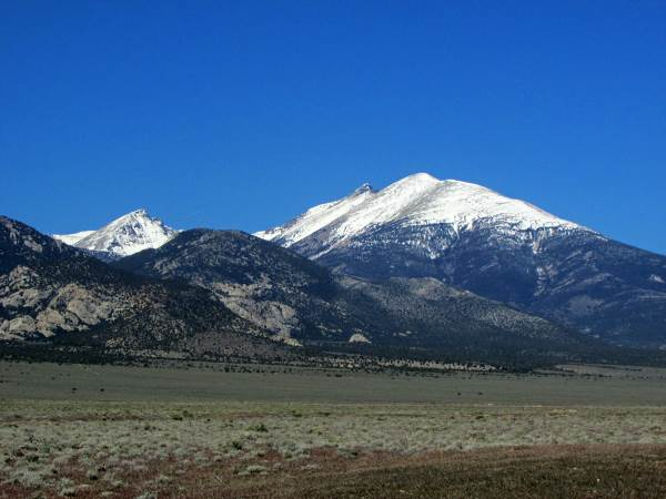 picture of Great Basin National Park, Nevada wildlife