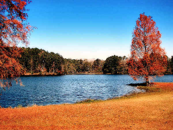 picture of Legion Lake in Mississippi
