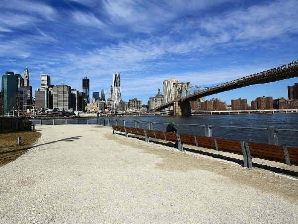 picture of New York city, New York Wildlife